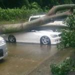 長野県 土石流で中学生が死亡!台風8号 大雨 洪水による土砂災害!