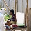エボラ出血熱,ウイルス,ファビピラビル