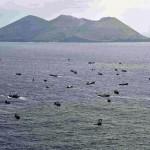 宝石サンゴ!中国漁船が小笠原諸島で赤珊瑚を違法に乱獲!
